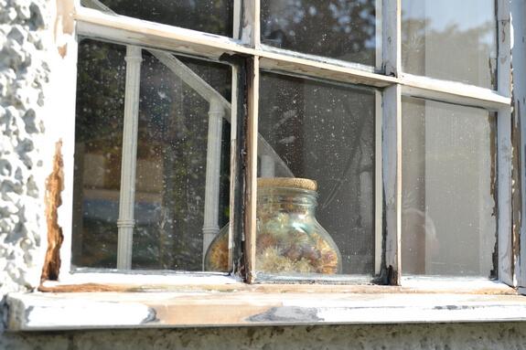 rot in window