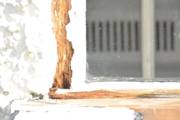 rot in casement window frame