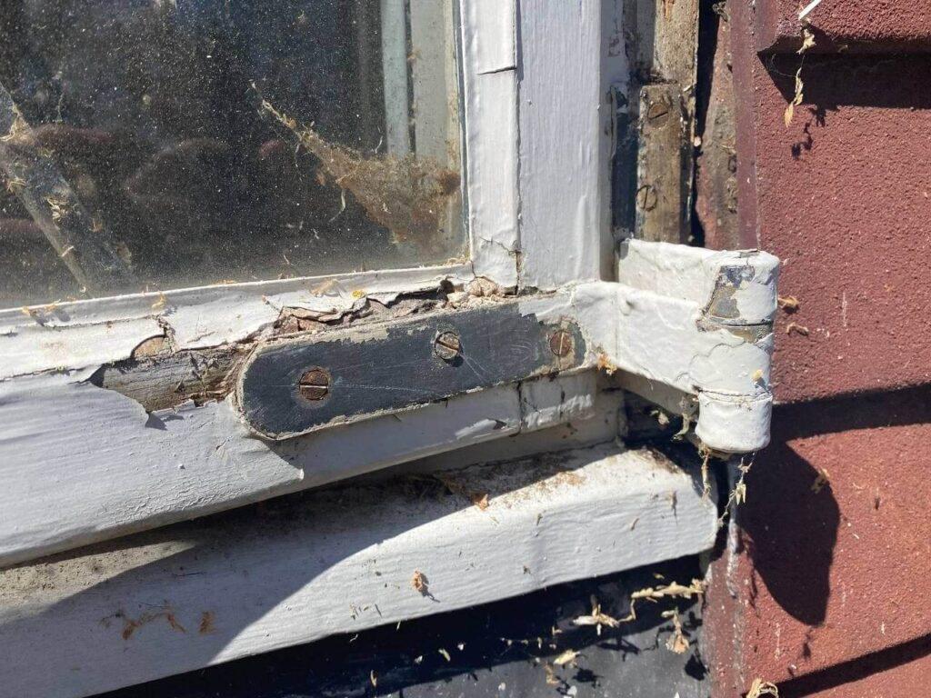 bad window hinges design