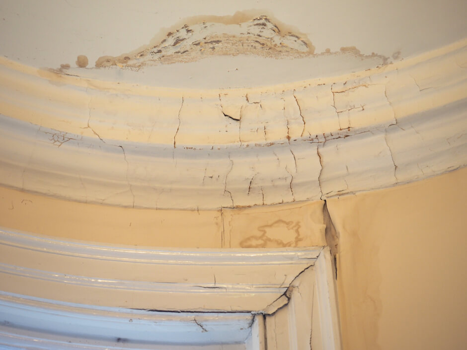 wall coatings prevention of damp