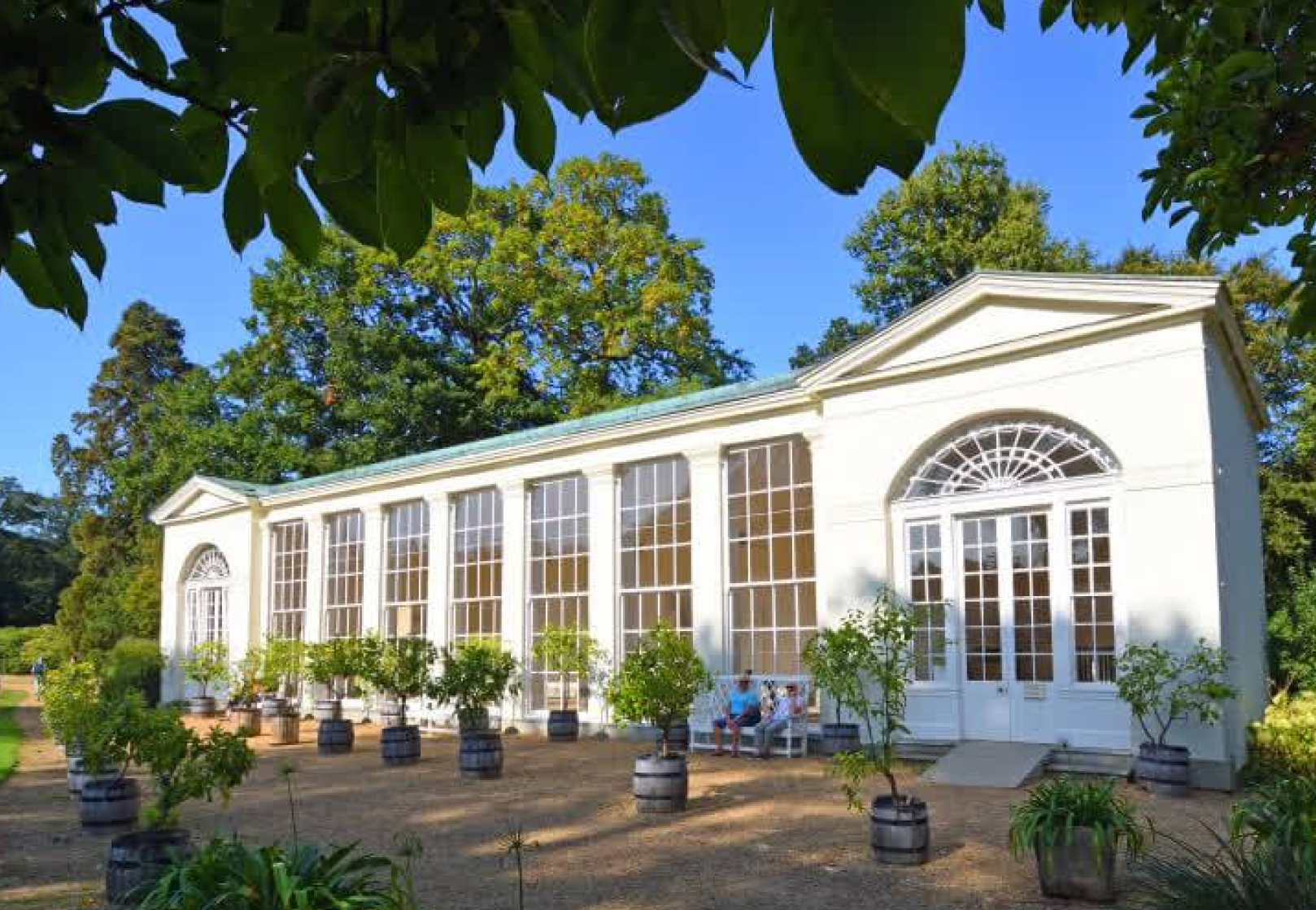Wooden conservatory repair | History of Orangeries